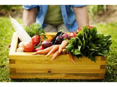 Vegetables in the box - best food santa clarita