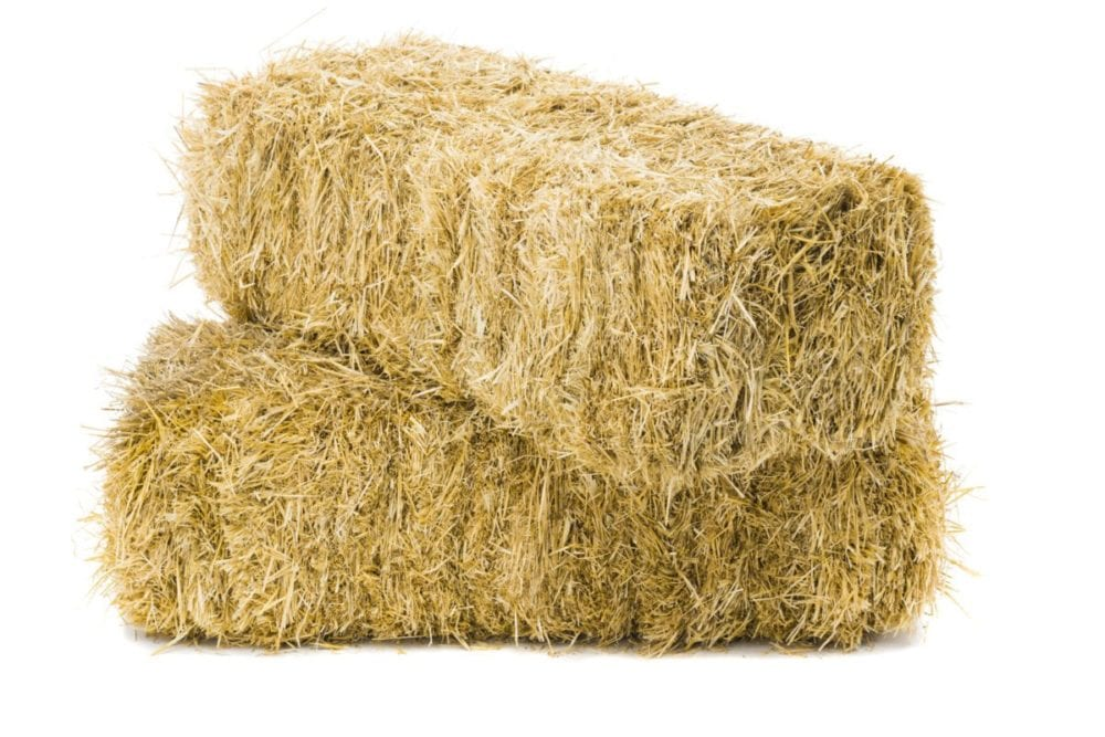Hay Come Back With Those 32 Bales You Stole Santa