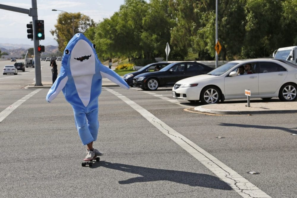 0803_news_shark guy_KL_04 copy