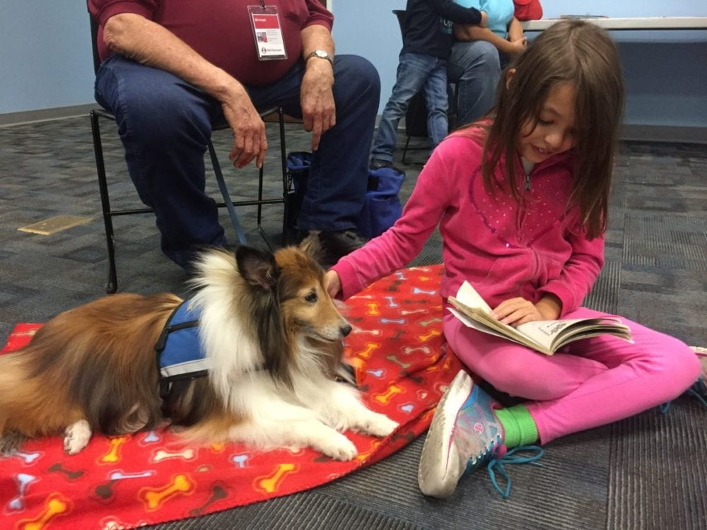 Children spend afternoon reading to therapy dogs at the library