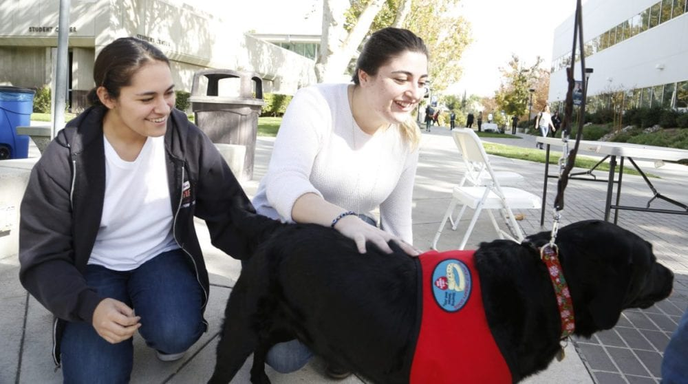 COC students 'paws' to de-stress during finals