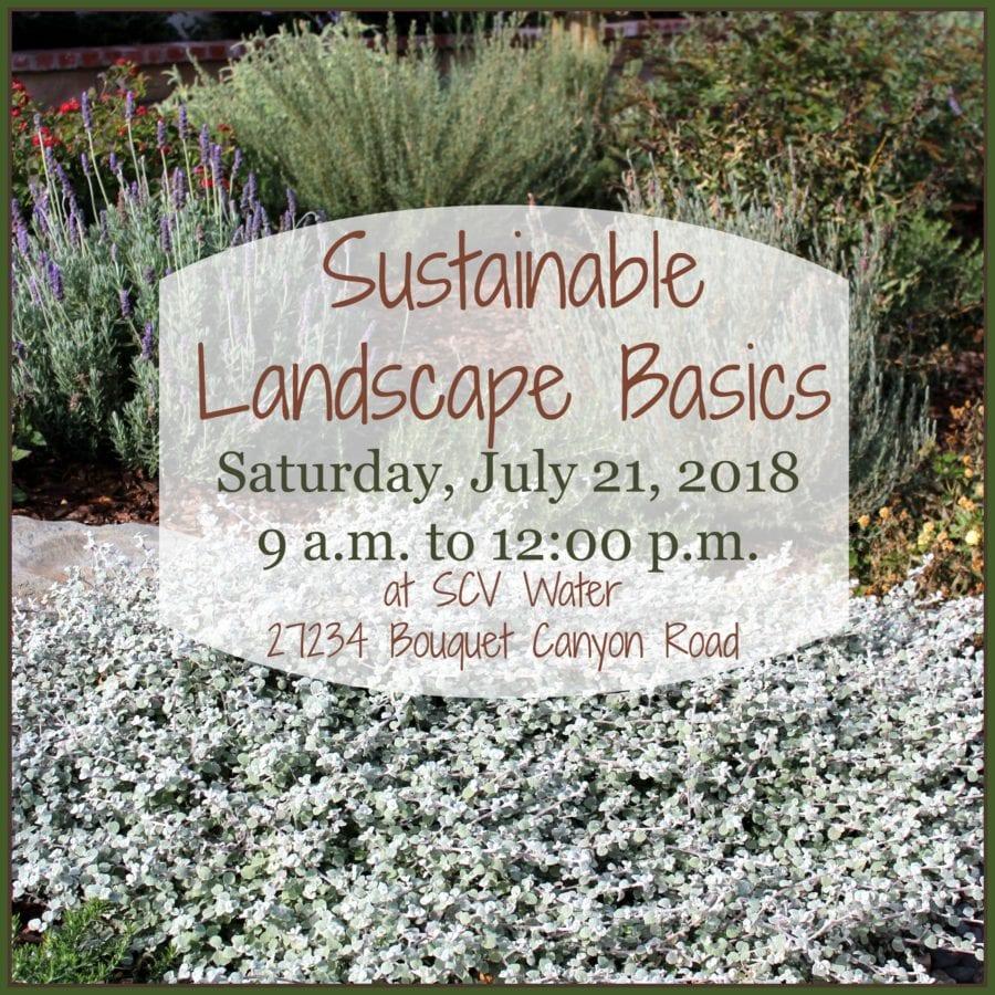 July 18 AM Sus Landscape Basics