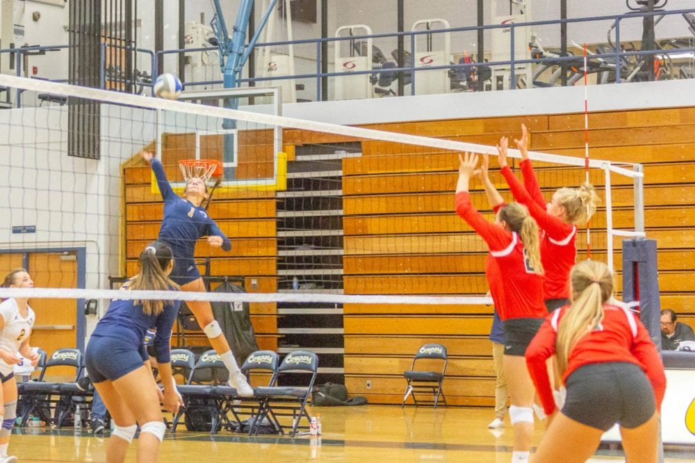 COC volleyball back in win column after defeating state-ranked LBCC