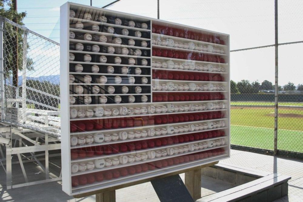 1001_sports_baseball_flag_HS_03