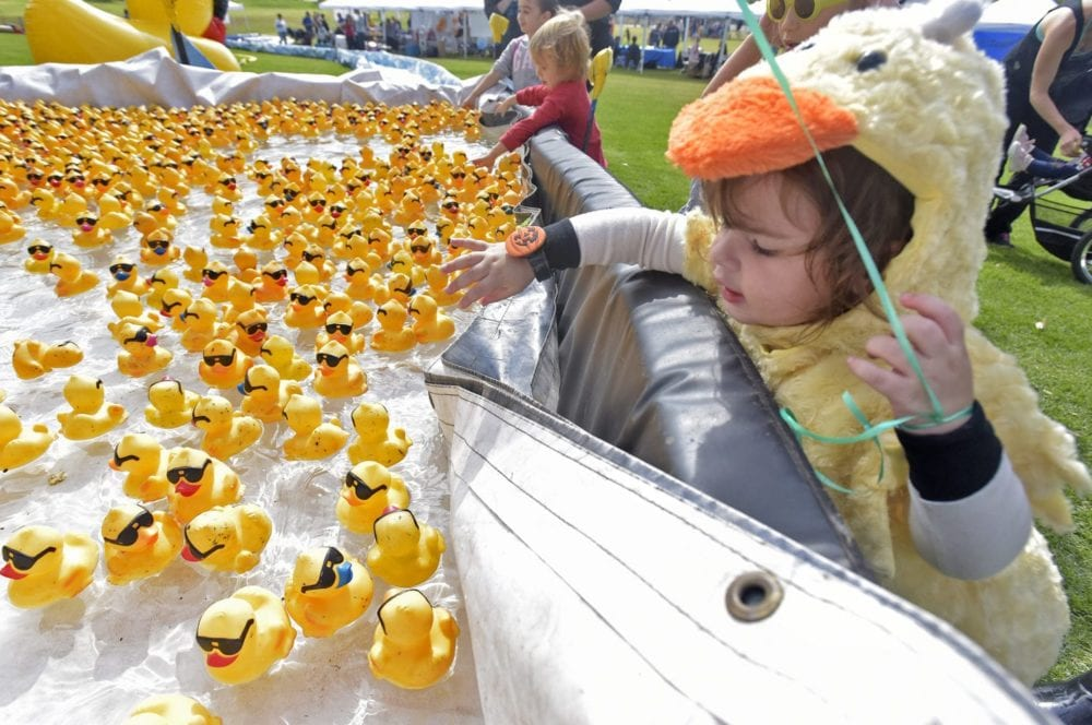 101318_news_Rubber Ducky_DW_01A