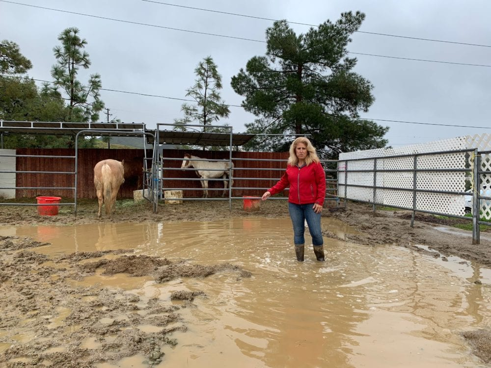 Hope Through Horses Open Barn rescheduled due to flooding