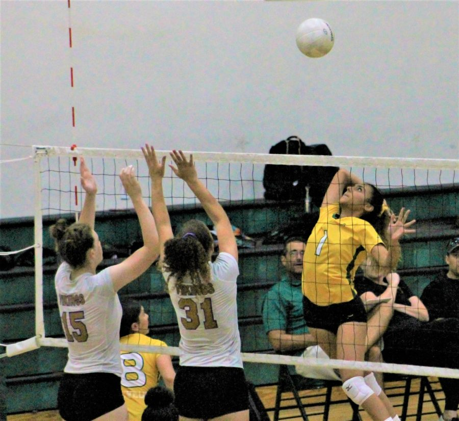 Valencia girls volleyball welcomes new coach with win over Canyon