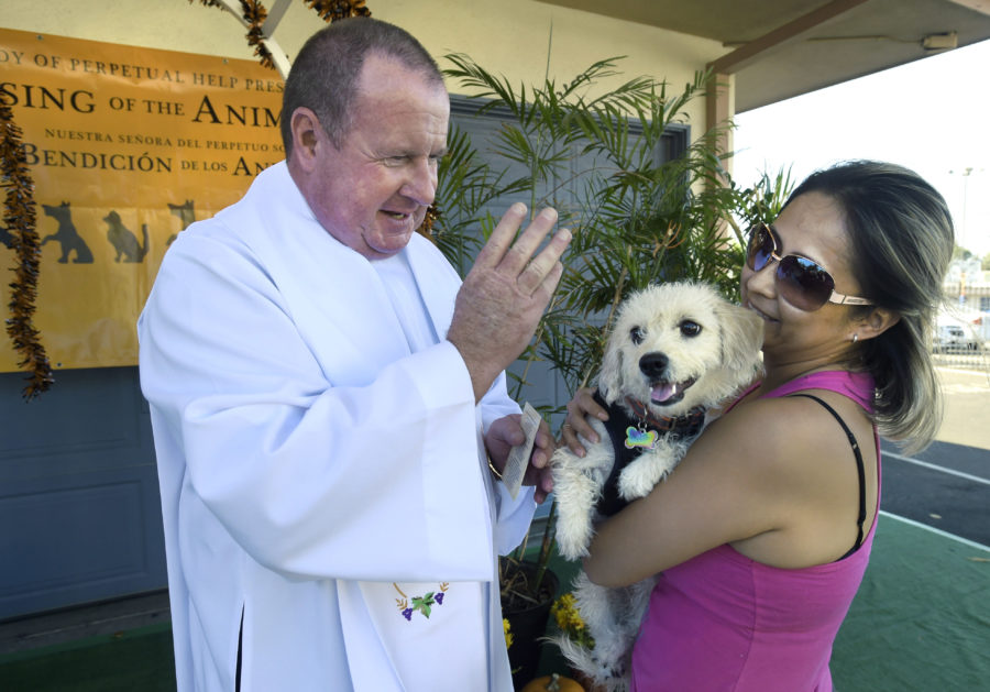 Local pet owners come together for pet blessing