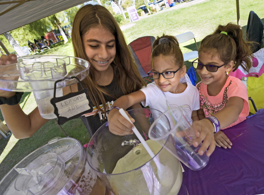 Small business lessons from a lemonade stand