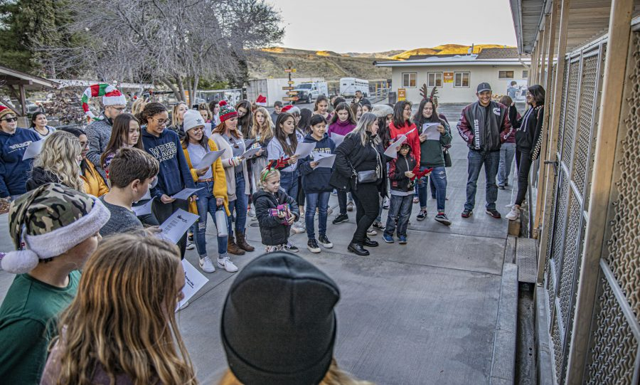 KLAWS carols to Castaic cats and dogs