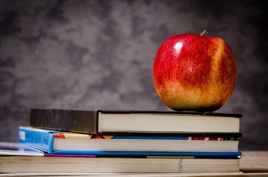 Community: Education in brief