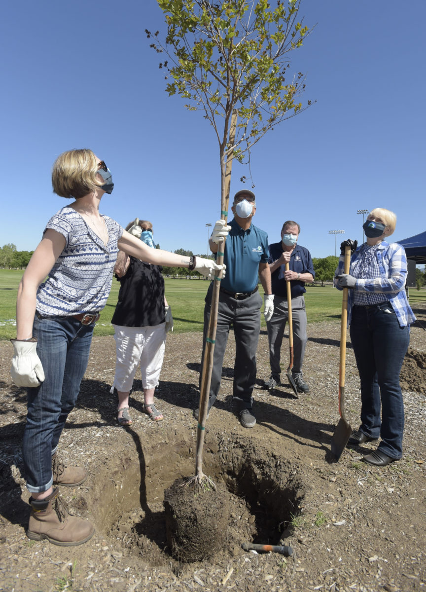 Arbor Day: City Council plants tree at Central Park