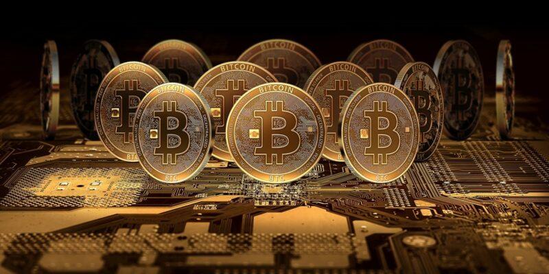 dragons den bitcoin profit 0 02 btc a eur