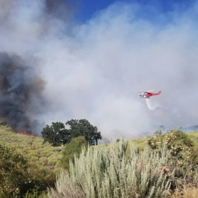 Firefighters battle a 200-acre brush fire in Gorman on Monday, July 27, 2020. Courtesy of the SCV Sheriff's Station