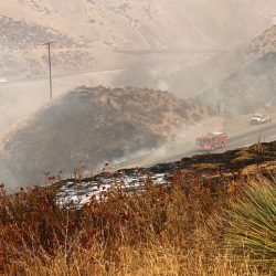 Firefighters battle the South Fire in Castaic on Monday, Sept. 7, 2020. Bobby Block/The Signal